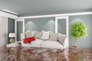 water damage cincinnati, water damage cleanup cincinnati, water damage restoration cincinnati