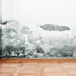 mold removal cincinnati, mold removal services cincinnati, mold remediation cincinnati