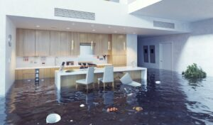 water damage restoration cincinnati, water damage repair cincinnati, water damage cleanup cincinnati